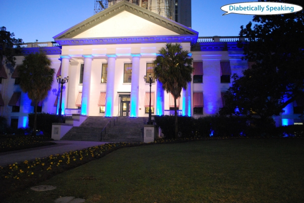 Florida Capitol - World Diabetes Day 2011