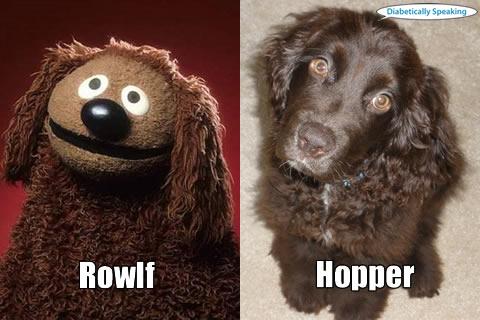 Rowlf and Hopper