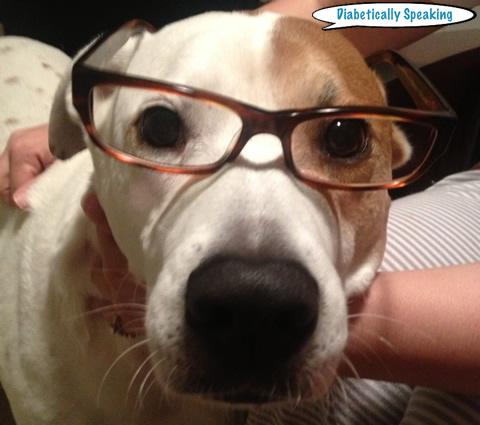 Bindi Glasses